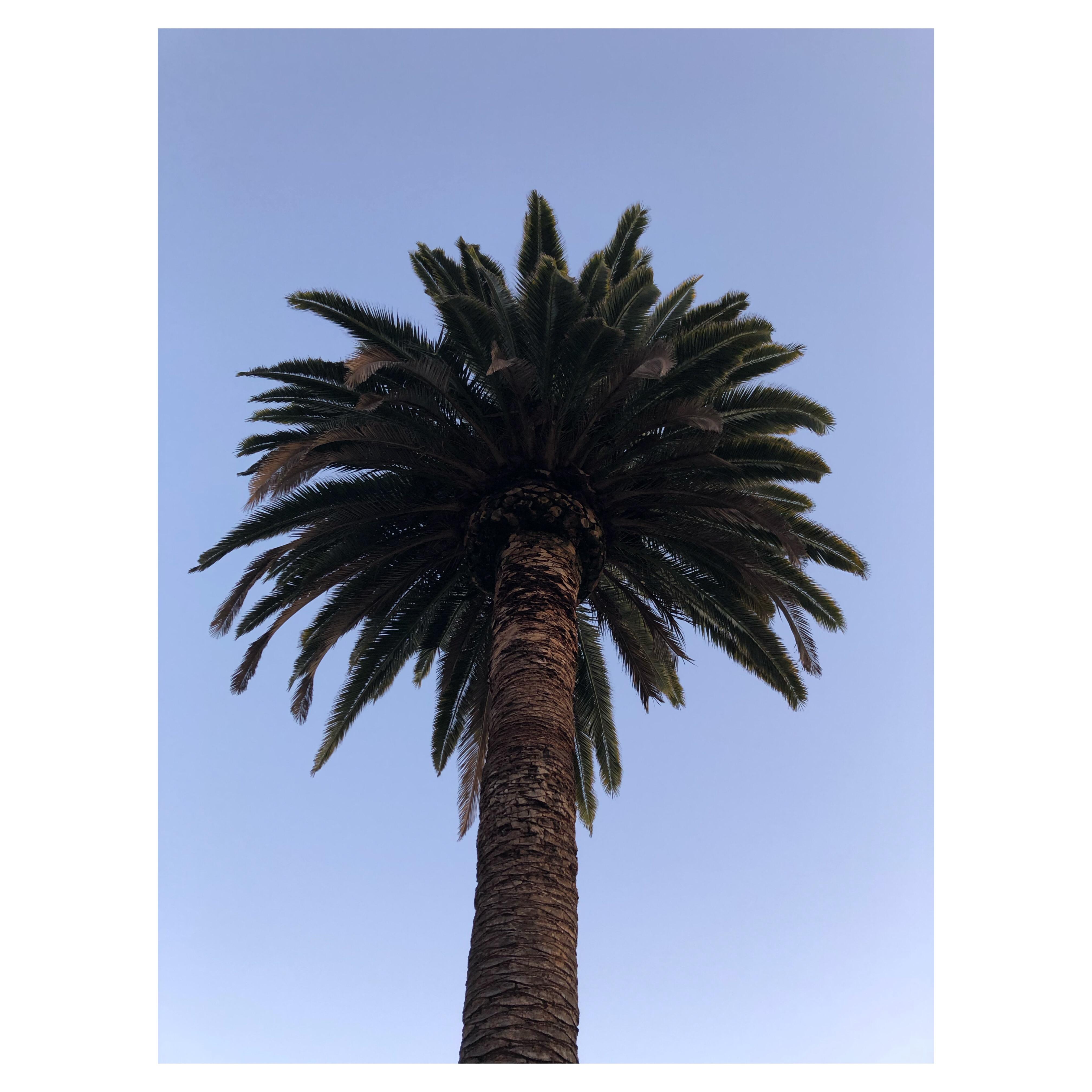 california4rf
